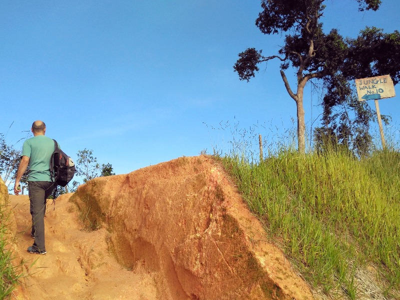 Cameron Highland trail number 10
